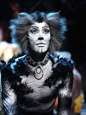 Cats at the London Palladium October 2015