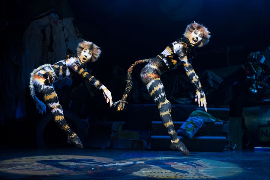 Book tickets for the Cats UK Tour