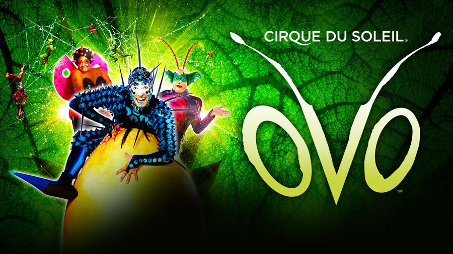 Cirque Du Soleil Ovo - Royal Albert Hall 2018