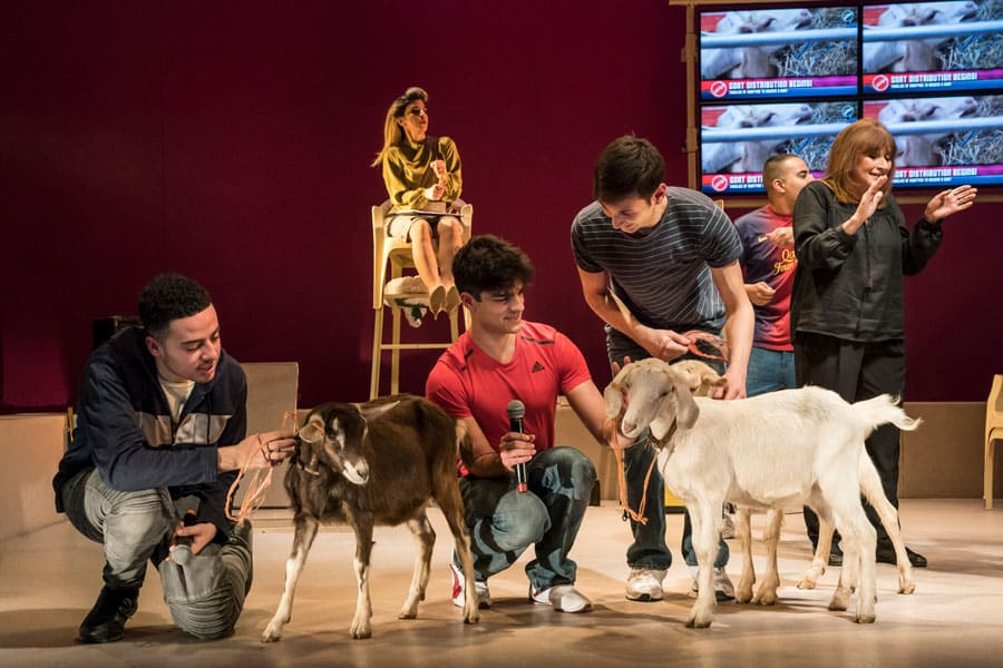 goats-review-royal-court-theatre-4