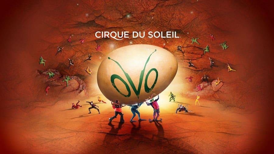 Cirque Du Soleil OVO UK Tour