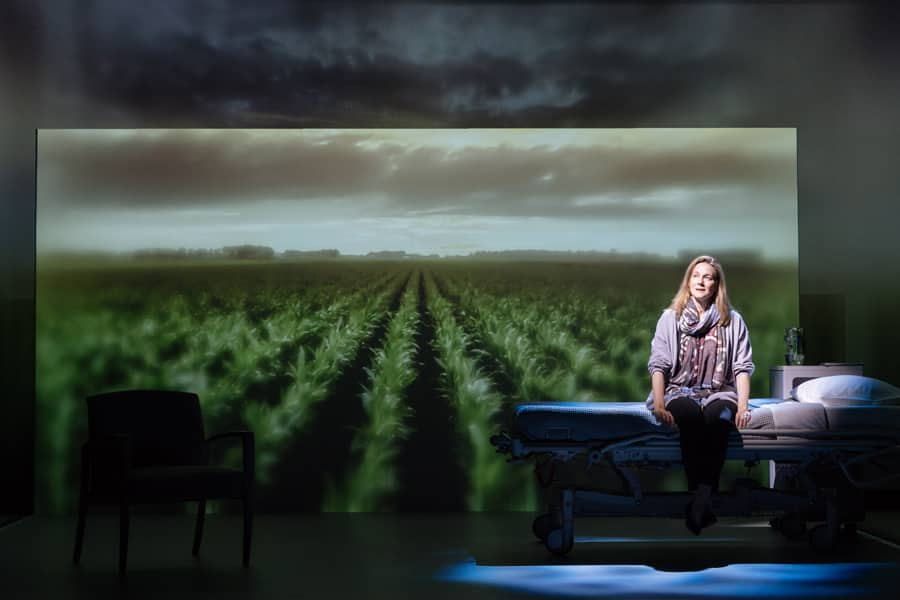 Laura Linney in My Name Is Lucy Barton review