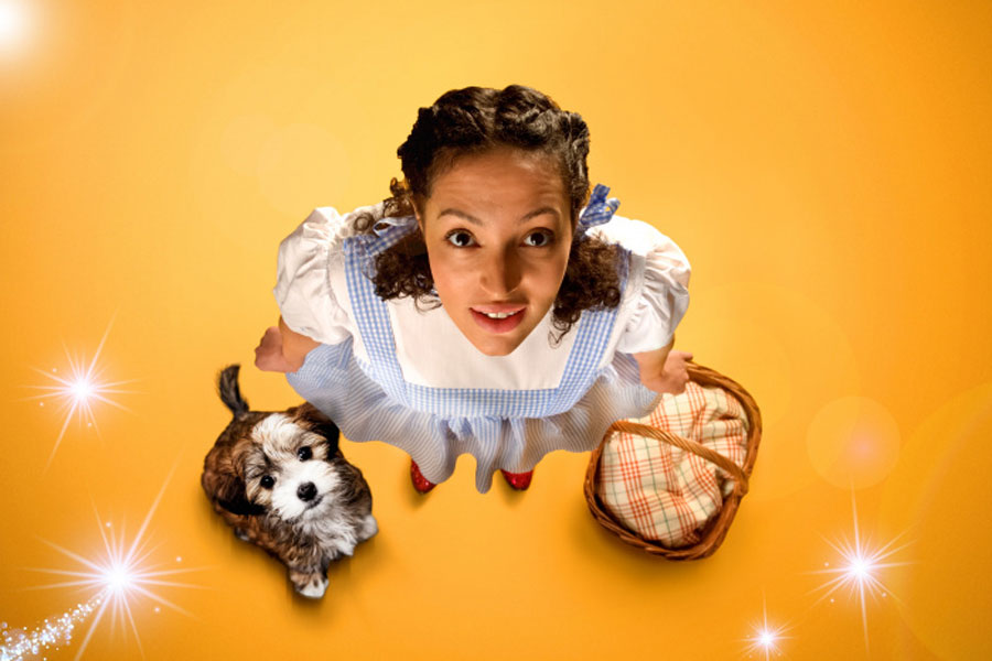 Wiizard Of Oz Birmingham Rep