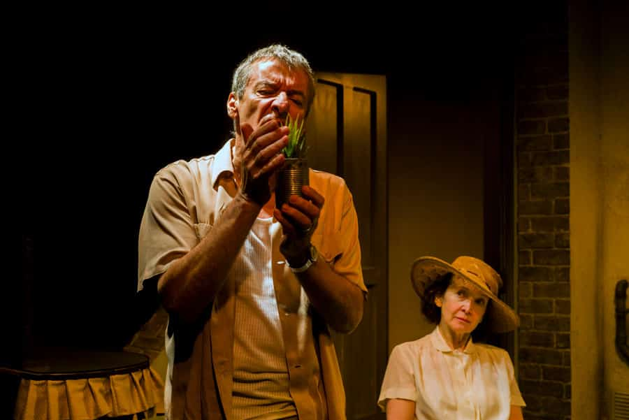 A Lesson From Aloes review Finborough Theatre
