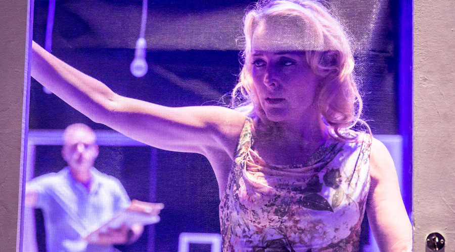 Streetcar Named Desire Young Vic